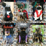 Purr-fect Cosplay Comic Covers!