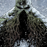 Swamp Thing: Winter Special Review